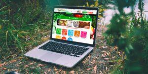 Création de site internet vitrine et e-commerce Vienne, Bourgoin-Jailleu 38